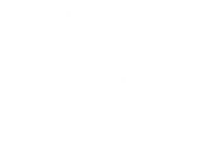 shaya group